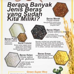 Jenis Beras di Indonesia